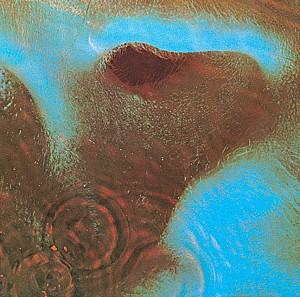 Pink Floyd - Meddle [180g LP remaster 2011] (vinyl)